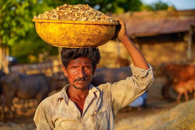 インドの労働者が田舎の酪農場を掃除