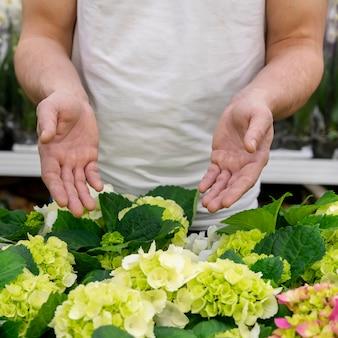植物のコレクションを提示する個人