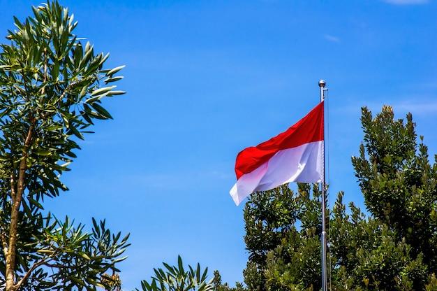 Национальный флаг индонезии и монако с голубым небом и фоном зелени.