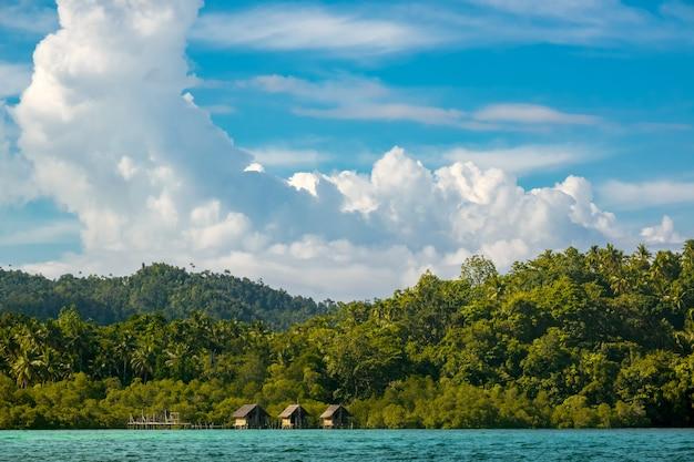 Индонезия. побережье тропического острова, заросшего тропическим лесом. солнечная погода.