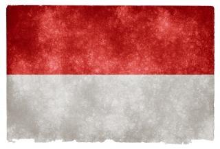 Indonesia grunge flag  grey