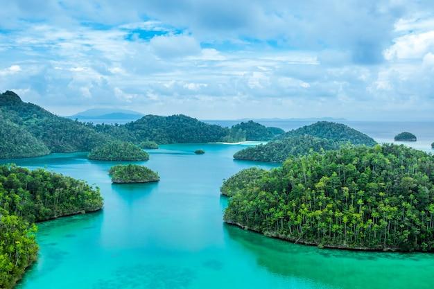 インドネシア。木とターコイズブルーの水で覆われた多くの小さな島