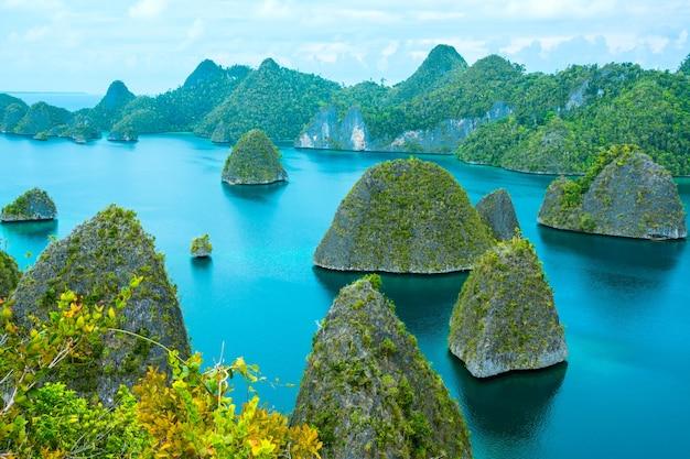 インドネシア。木と紺碧の水で覆われた多くの小さな岩の島