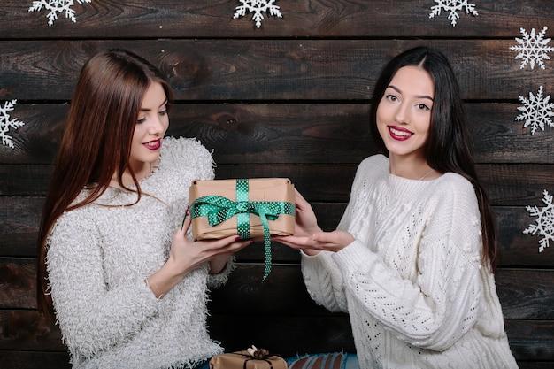 Un ritratto di stile di vita dell'interno di due amici divertenti abbastanza giovani delle donne abbraccia il sorridere