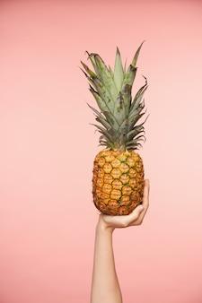 ピンクの背景の上に分離された、新鮮なパイナップルを育て、それからジュースを作るつもりの裸のマニキュアときれいな女性の手の屋内ショット