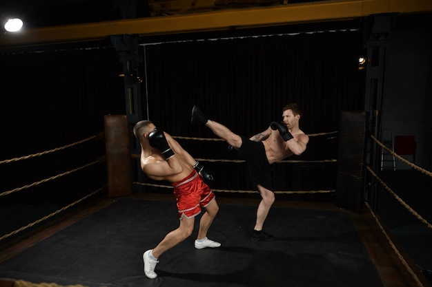 Indoor shot of professional young european male mixed fighters with naked torso boxing on ring: male in black shorts reaching out leg, going to kick his enemy in red trousers right in his face