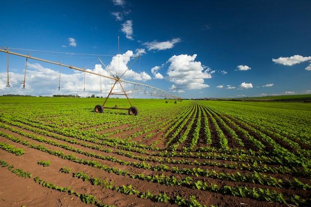 Промышленное ирригационное оборудование на поле фермы под голубым небом в бразилии. сельское хозяйство.