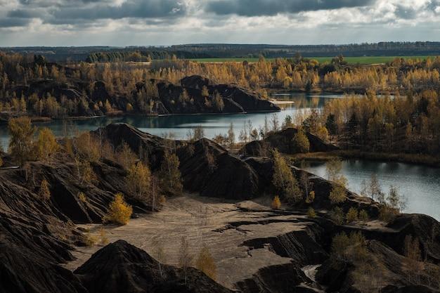 회색 하늘을 배경으로 노란 자작나무가 있는 가을의 산업 풍경