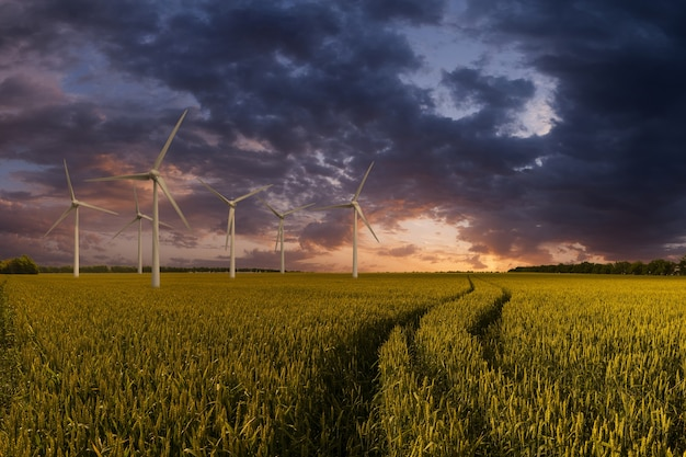 Industrial landscape with wind turbines in field, renewable eco energy, electric windmills