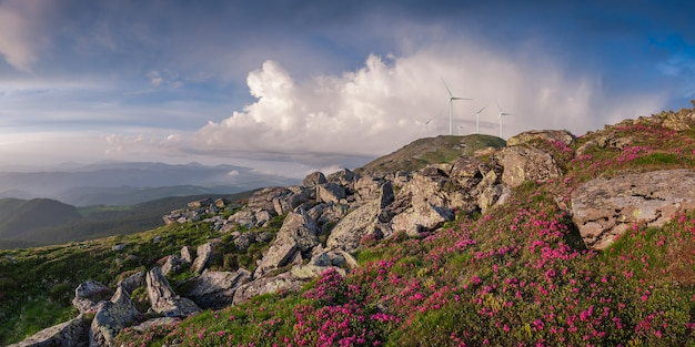 Industrial landscape with wind turbines in mountains, renewable eco energy, electric windmills