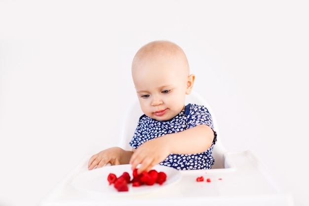 Infant girl sitting in high child's chair eating berries on white