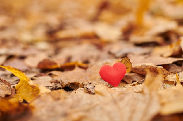 Infatuation, one-sided romantic love concept