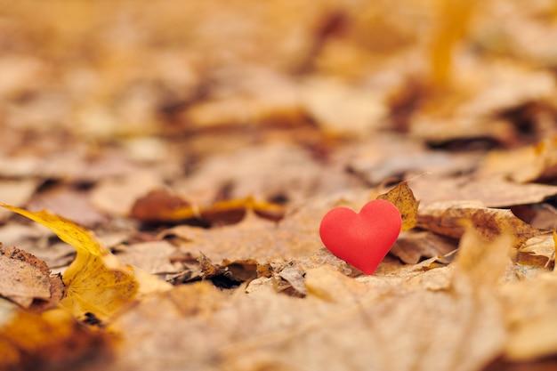 Infatuation or unrequited romantic love concept.