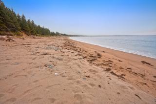 Ingonish beach   hdr  free