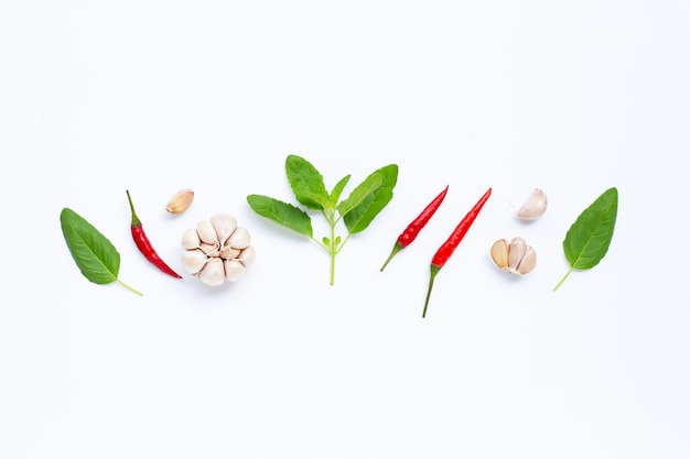 Ingredients herb and spice, holy basil, chili and garlic on white