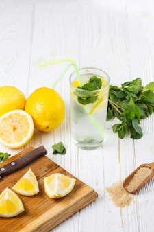 Ingredients for refreshing citrus mint water