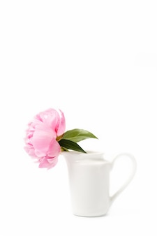 Innocence and delicacy minimalistic valentine day concept, one single flower of pink peony in small vase on white surface, concept of sensuality and femininity