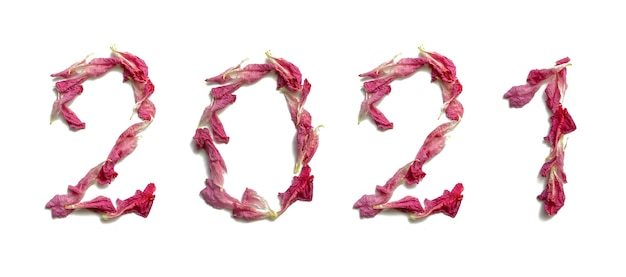 The inscription 2021 from fresh tender pink rose petals on a white background. isolated, closeup. happy new year.