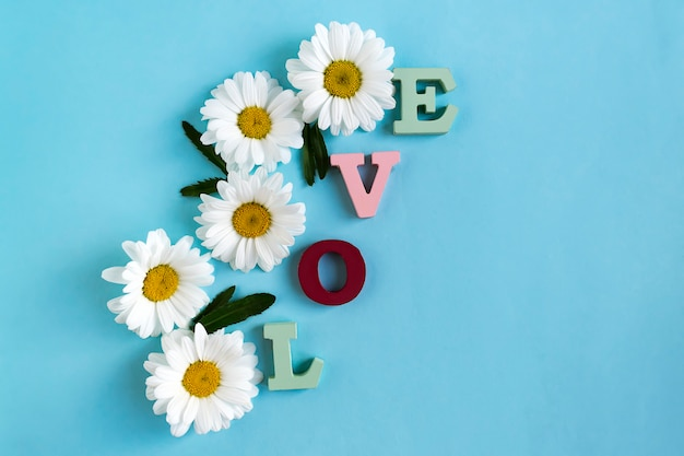 Inscription love from wooden letters and chamomile flowers with green leaves on blue