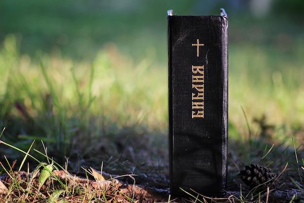 자연에서 십자가와 성경