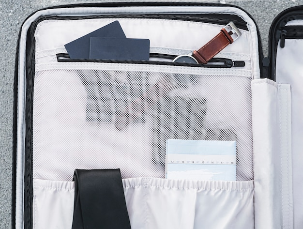 Внутри чемодана сидят паспорта и часы