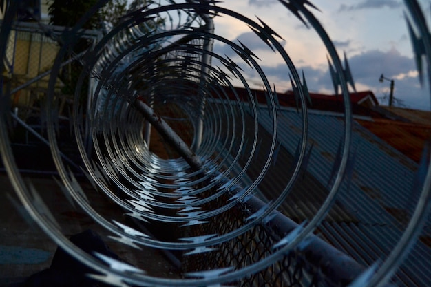 Inside view of a barbed wire