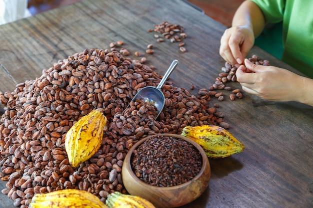 Проверка качества какао-бобов вручную