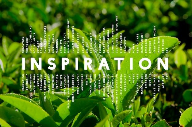 영감 꿈 상상 창조적인 영감 개념