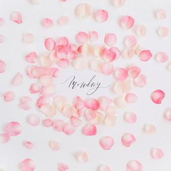 書道と花のピンクのバラの花びらで作られた心に強く訴える引用