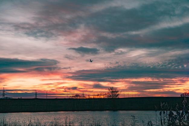 Inspiring view of sunrise light