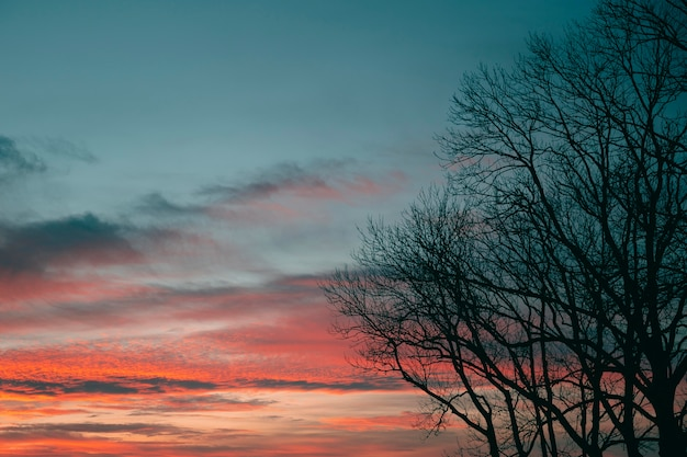 Inspiring view of sunset light