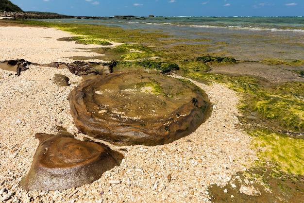 Интересная форма мокрых скал в окружении пляжного песка и зеленых водорослей острова ириомотэ.