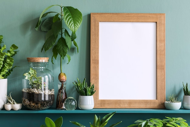 다른 힙 스터 냄비, 장식 및 우아한 개인 액세서리에 식물이있는 녹색 선반에 사진 프레임이있는 거실의 인테리어 디자인. 가정 원예.