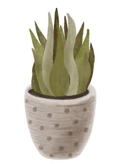 Растения дизайна интерьера, горшечные растения, иллюстрации, изолированные на белом фоне