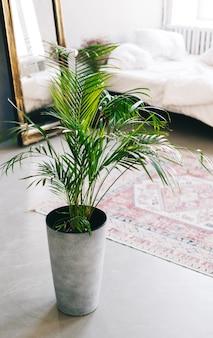 Детали интерьера гостиной с комнатными растениями.