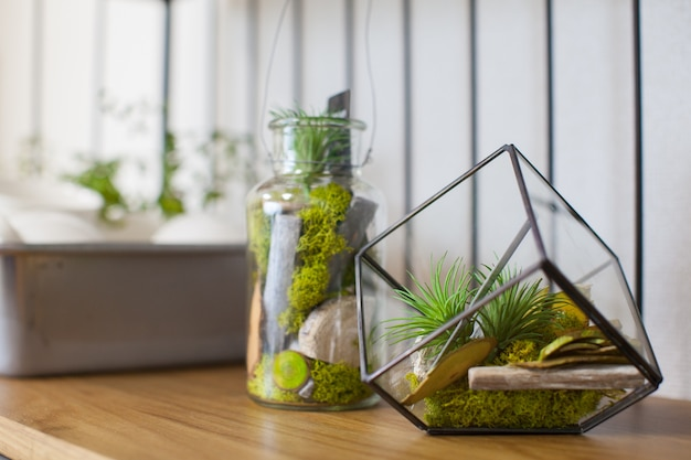 Interior green item