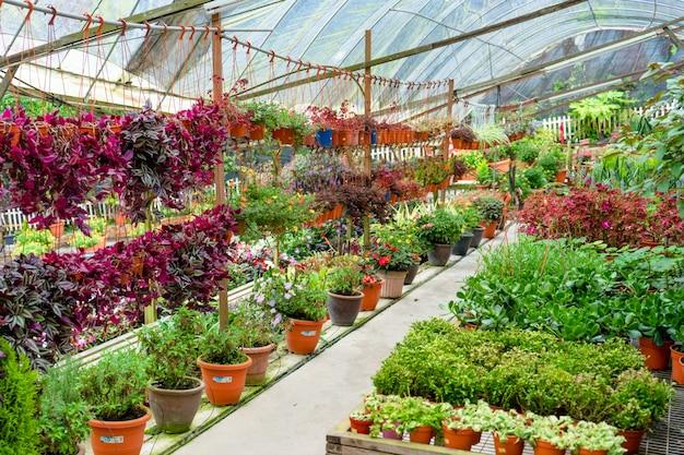 Интерьер цветочного магазина, декор для двора и дома.