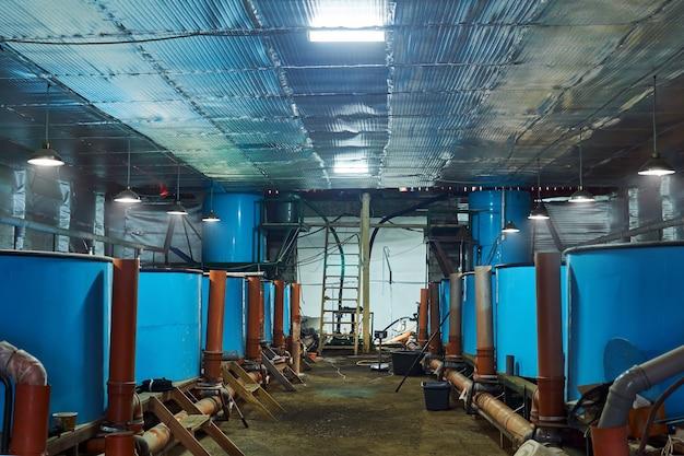 물고기 부화장에 물고기를 보관하기 위한 탱크가 있는 작업장 내부