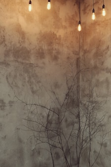 마른 가지가있는 아파트의 내부