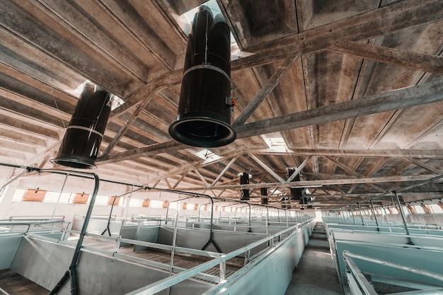 動物農場の内部。動物はいません。空の納屋。