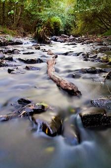 Interior river
