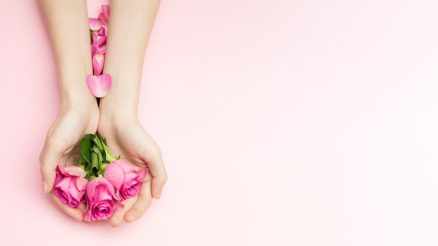 International womans day and happy valentines, mothers day concept. the woman hands hold rose flowers on a pink background. a thin wrist and natural manicure.