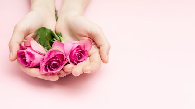 国際女性の日、母の日のコンセプト。女性の手はピンクの背景にバラの花を保持します。細い手首と自然なマニキュア。