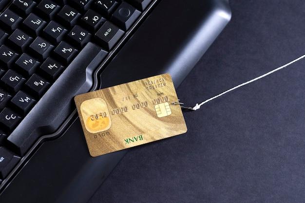 컴퓨터 기술을 사용한 인터넷 사기, 인터넷에서 돈을 훔치는 것, 신용 카드 데이터를 훔치는 것. 낚싯대와 후크.