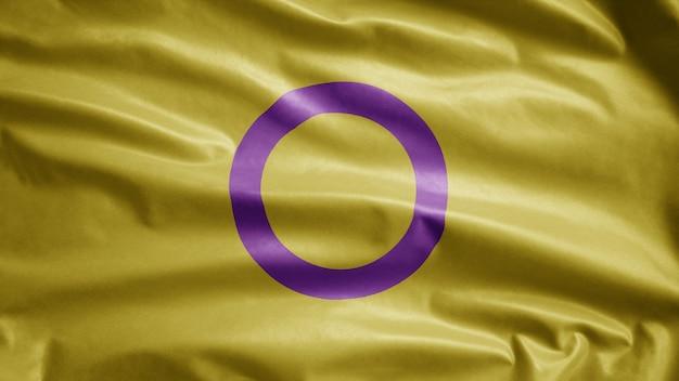 Интерсексуальный флаг развевается на ветру. раздувание баннера интерсексуальности, мягкий и гладкий шелк.