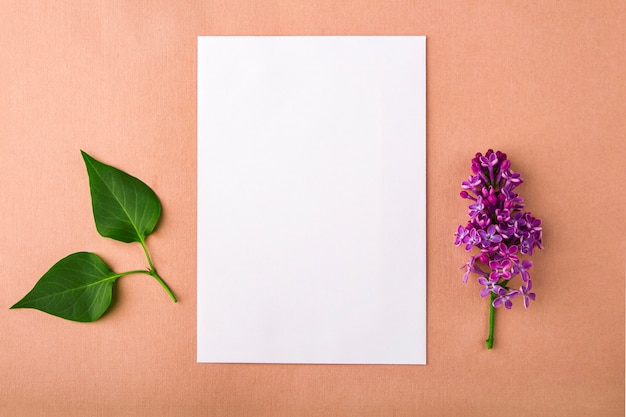 Invitation greeting card with flower and leaves