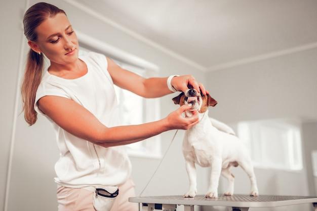 調査に関与。犬の歯の検査に関わる美しい資格のある犬の専門家の気持ち