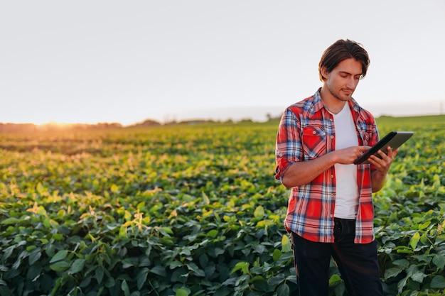 農学者、ipadを保持していると画面を見てフィールドに立っています。