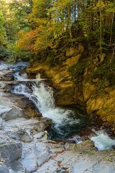 Irati forest or jungle in autumn, cubos waterfall. ochagavia, northern navarra in spain