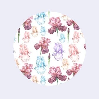 菖蒲の花が春に咲きます。水彩イラストパターン